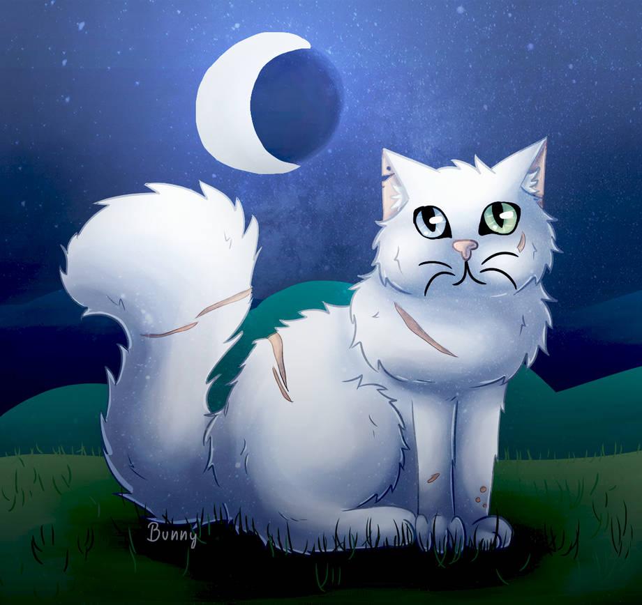 Het Commission Topic Whitelion_redraw_2019_by_bunnydrawscats_ddmsol3-pre.jpg?token=eyJ0eXAiOiJKV1QiLCJhbGciOiJIUzI1NiJ9.eyJzdWIiOiJ1cm46YXBwOjdlMGQxODg5ODIyNjQzNzNhNWYwZDQxNWVhMGQyNmUwIiwiaXNzIjoidXJuOmFwcDo3ZTBkMTg4OTgyMjY0MzczYTVmMGQ0MTVlYTBkMjZlMCIsIm9iaiI6W1t7ImhlaWdodCI6Ijw9MTE0NyIsInBhdGgiOiJcL2ZcLzMwOTViYjI3LTlmNWYtNDMwYS1hNTJhLWFhMTA2NGY0M2IxZVwvZGRtc29sMy00MzkxZmUyYy05MTk4LTQ2NzAtYjdmOS1jMmM3NDRkODVhMDUucG5nIiwid2lkdGgiOiI8PTEyMTYifV1dLCJhdWQiOlsidXJuOnNlcnZpY2U6aW1hZ2Uub3BlcmF0aW9ucyJdfQ