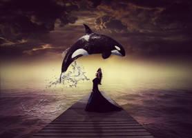 Free Willy... by moniabrozkova