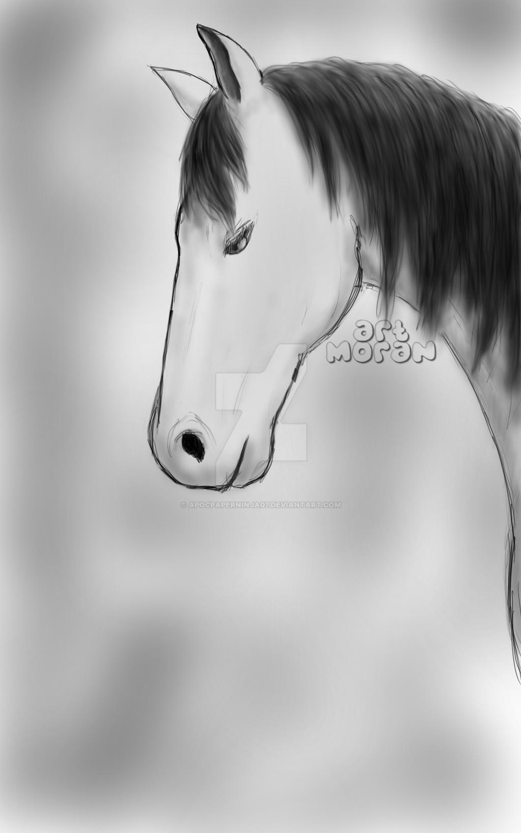 Horse by Ninjago-7