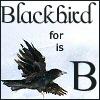 B is for Blackbird by shetakaey