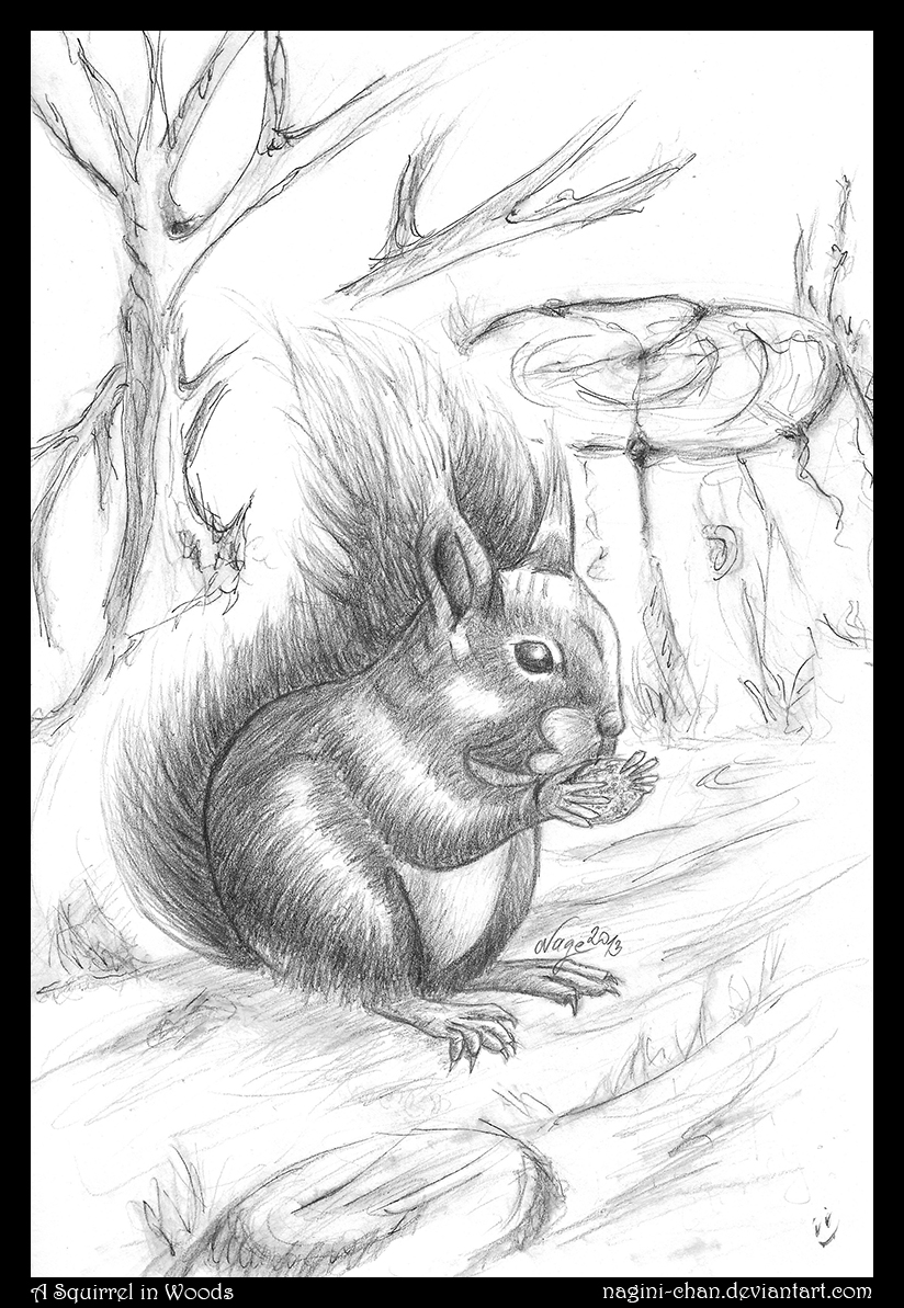 A Squirrel in Woods [Commission] by nagini-chan
