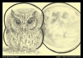 80th Birthday Owl by nagini-chan