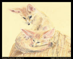 Fennec Foxes for =shertso by nagini-chan