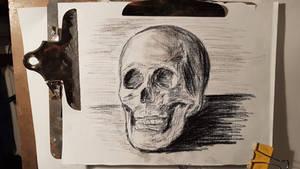 skull sketch(black chalk pencil on textured paper)
