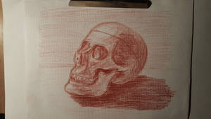 skull sketch (red chalk pencil on textured paper)