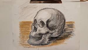 skull sketch(oil pastel)