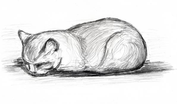 sleeping cat pencil sketch 6