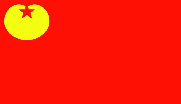 Communist Socialist Party Netherlands| SPNL Alter.