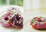 The Donut Story