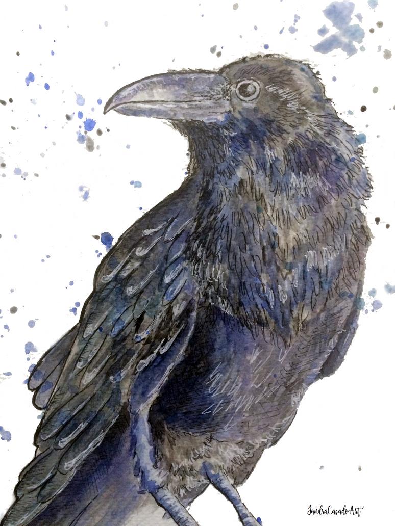 Cuervo by Fayland