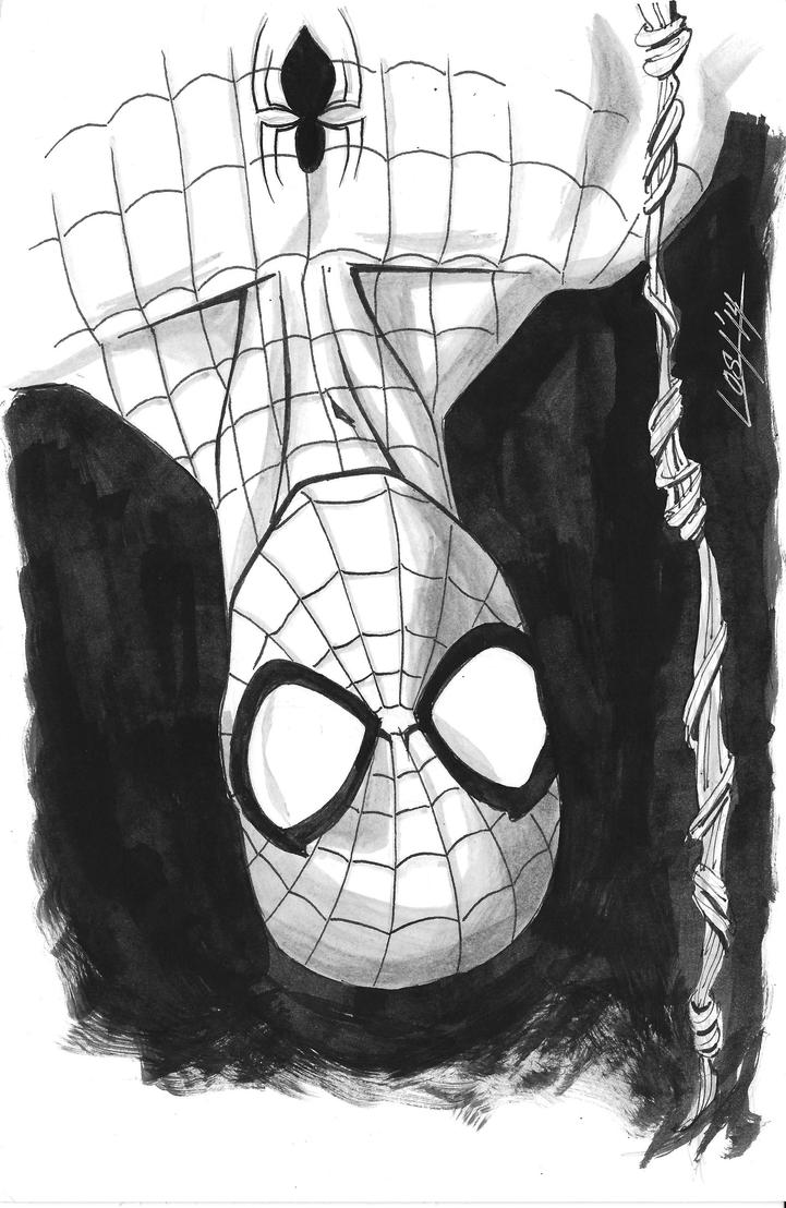 Spiderman by Scott-Lost