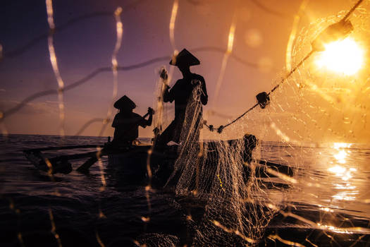Into the Depths with Nets and Lines