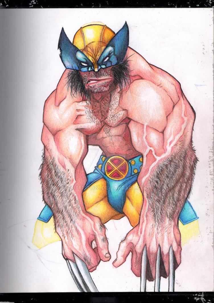 Wolverine by Kitfisto28