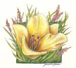 Fairly Flower