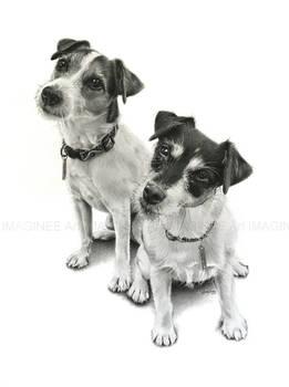Oscar and Madison