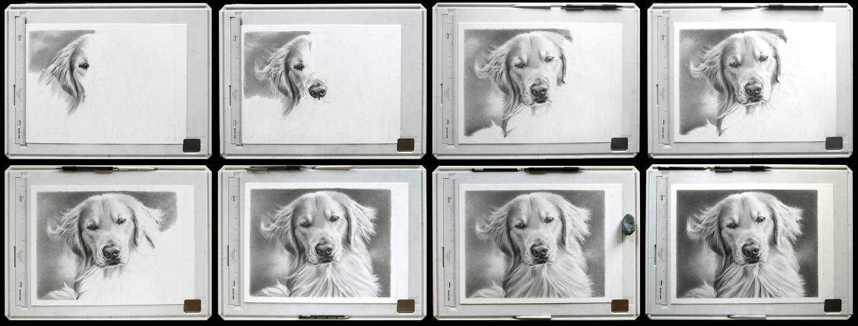 Dakota portrait wip images by imaginee