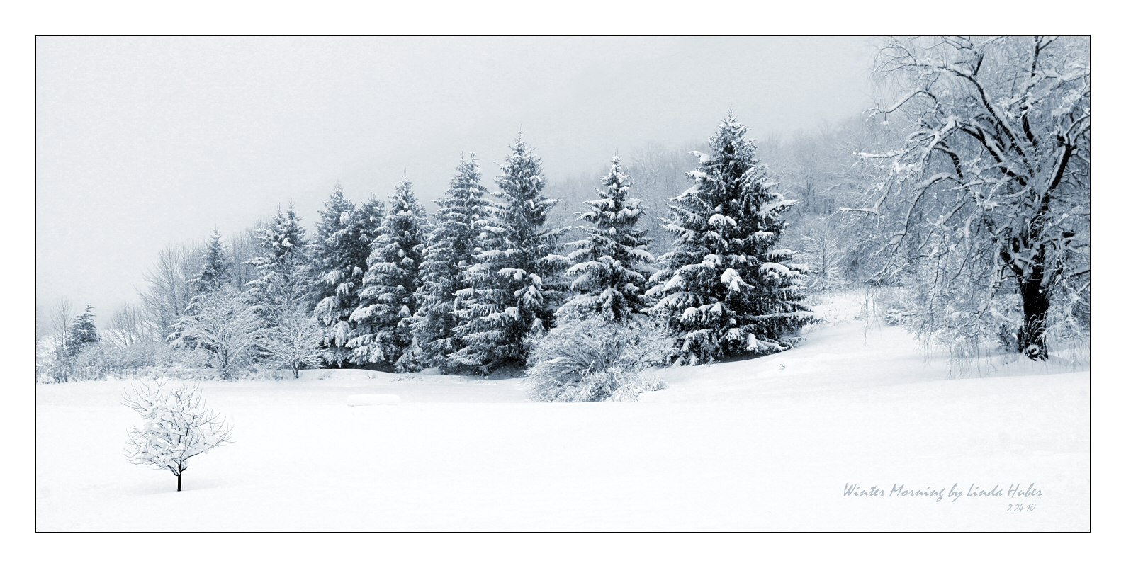 Winter Morning by imaginee