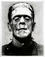 Frankenstein's monster by Linda Huber