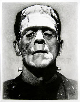 Frankenstein's monster by Linda Huber