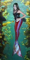 Red III Mermaid