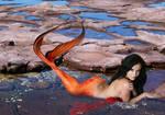 Mermaid Bree