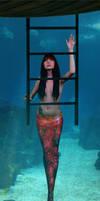 Mermaid Brandi by sirenabonita