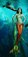 Mermaid Simona has an admirer