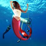 Mermaid Lisa ~ Finders Keepers