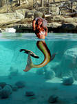 Sirena Luzii ~ a mermaid in the otter pool