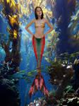Oly's Mermaid
