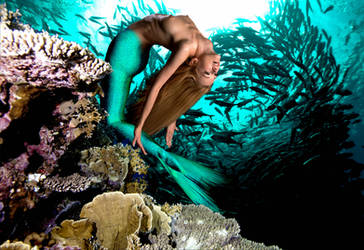 Mermaid Olivia ~ Somersault by sirenabonita