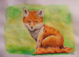 Fuchsjunges by ZiskaJa