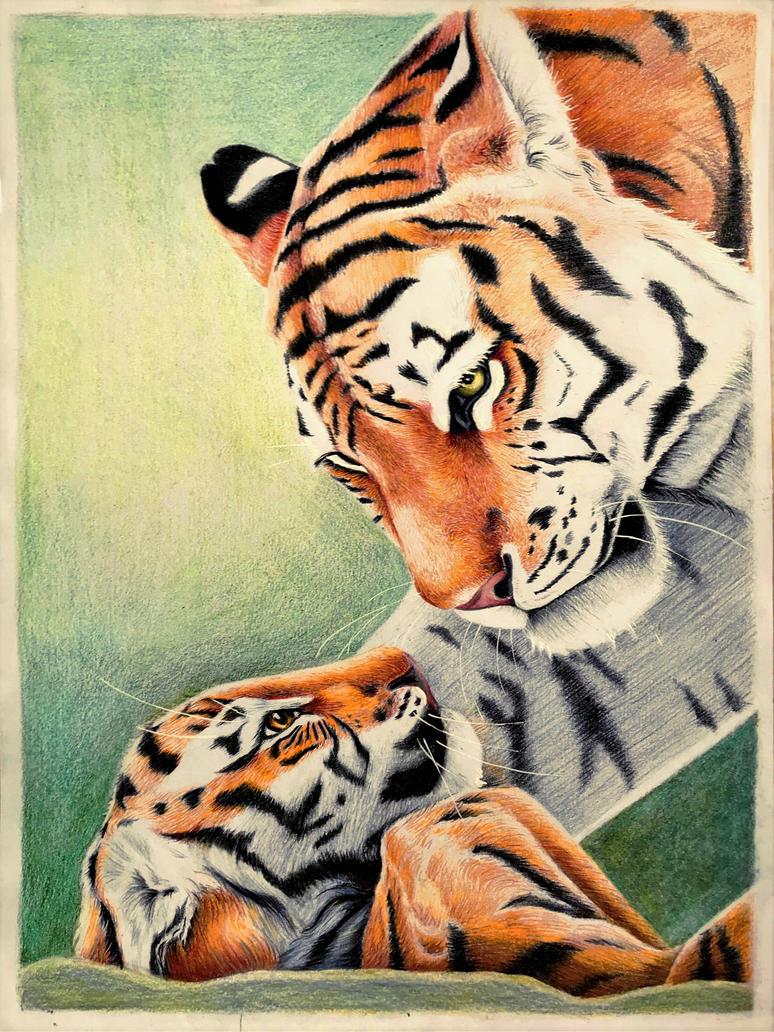 Tiger with Cub by ZiskaJa