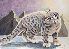 Snowleopard2 (2) by ZiskaJa