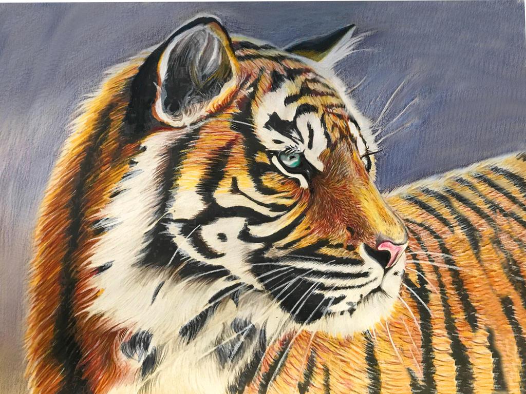 Tigerwoxy6 by ZiskaJa