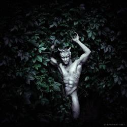 The Gorgon Gardens by B0NDART