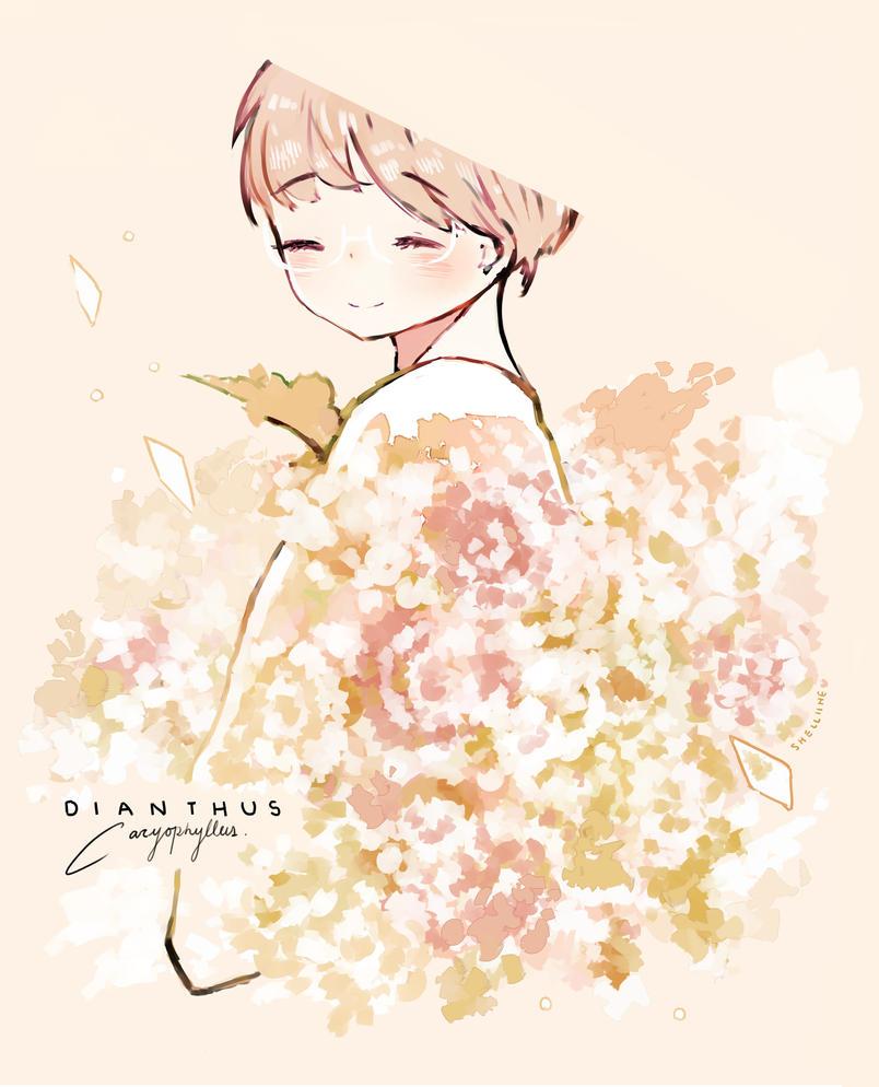 Carnations  by shelliihe