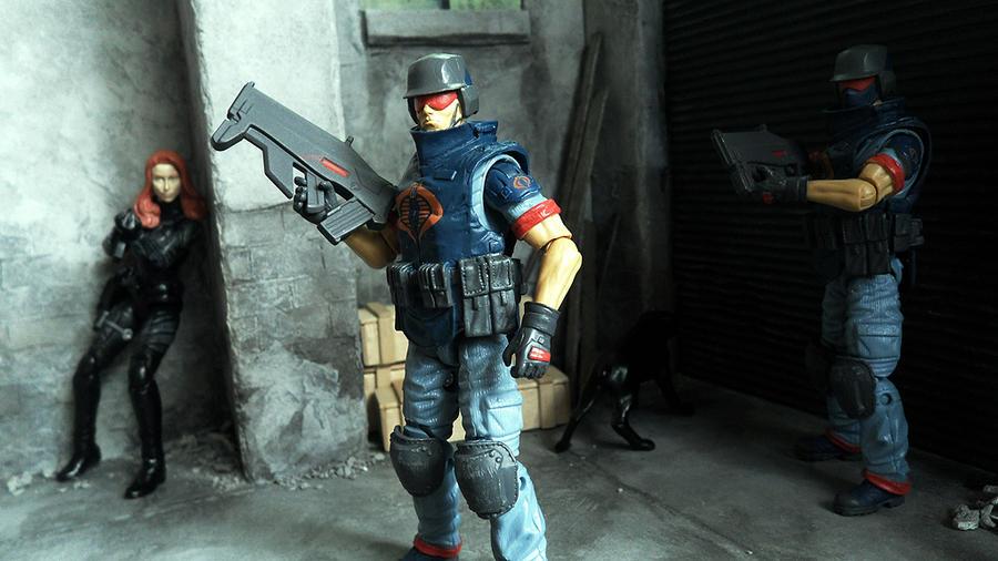 Cobra Security by scruffyronin