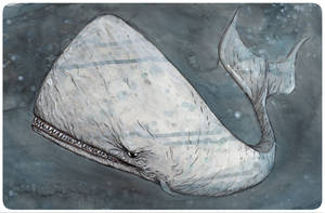 Monster Whale by Gary Shipman by G-Ship