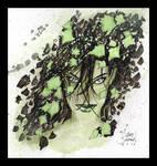 Black Ivy by Gary Shipman