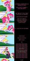 Pinkie Pie Says Goodnight: The Fourth Wall