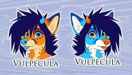 Double Sided Badge