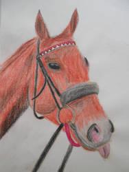 Horse by GiraffeAndy