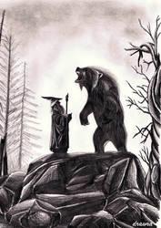 Gandalf and Beorn by drawra