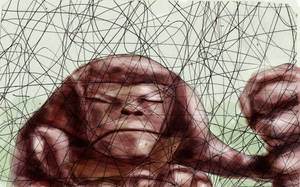 gorilla out scribbles by tsad