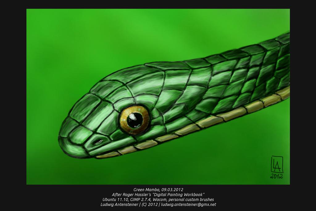Green Mamba by ludwig-a