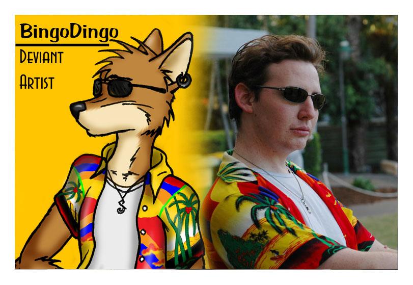 bingodingo's Profile Picture