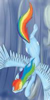 Rainbow Hoers