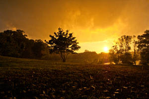 One Rainy Wish by JustinDeRosa
