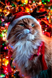 Merry Catmas by JustinDeRosa